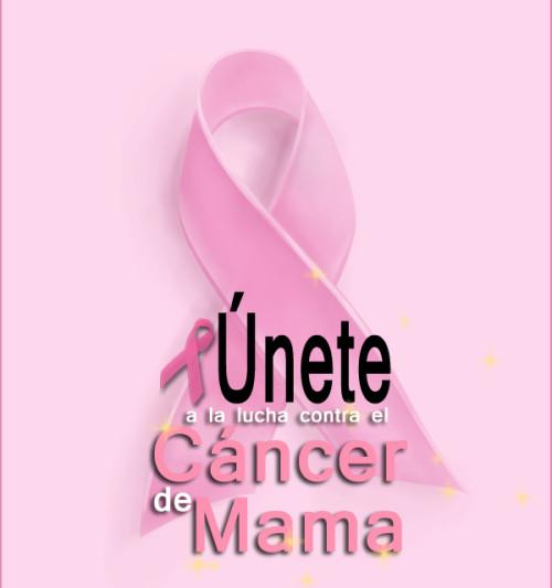 Imagenes Lazos Rosas Cancer.Por Que El Color Rosa