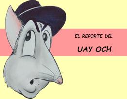 LOGO REPORTE DEL UAY NUEVO 2
